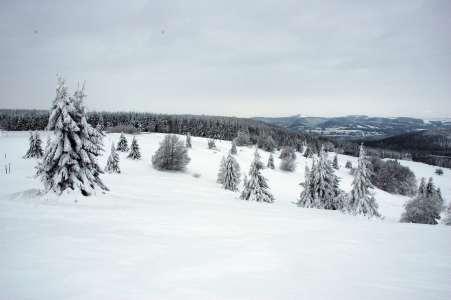 Blick von der Bergstation in Richtung Wurzelbrunnen